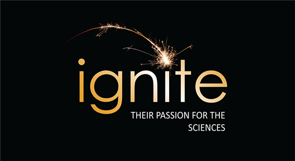 ignite logo rectangular